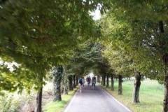 Viale cimitero