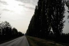 colline-moreniche-bassa-bresciana_40714365151_o