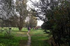Parco al Po - Lungo fiume