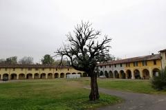 Monticelli d'Oglio