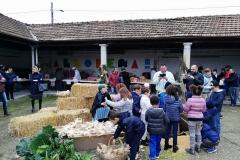 Festa di San Martino a Robecco d'Oglio (CR)