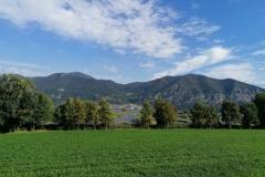 Riserva Naturale Torbiere del Sebino - Iseo (BS)