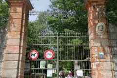 Riserva Naturale Bosco Fontana - Marmirolo (MN)