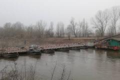 Ponte delle Barche - Torre d'Oglio (MN)