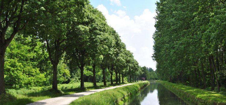 [2018.05.20] Parco Oglio Nord – (100)75 km (10)06 Castelli