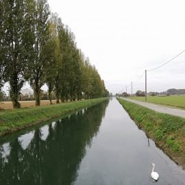 [2018.11.04] Lungo il Canale Vacchelli – Soncino (CR) > Crema (CR)