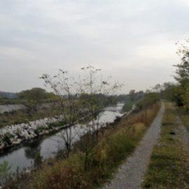 [2017.10.28] Lungo il Fiume Chiese – Montichiari (BS) > Acquafredda (BS)
