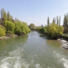 [2019.03.31] Tra i fiumi Oglio e Mella – Manerbio (BS) > Seniga (BS)
